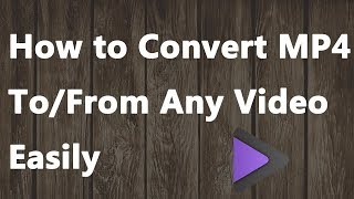 2019 NEW - How to Convert MP4 to/from Any Video Easily