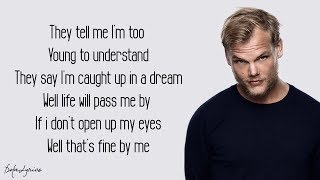Avicii - Wake Me Up (Lyrics)