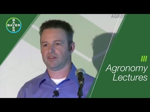 Part 1 Review of Multi-Year Cereal Fungicide DSTs - Troy Basaraba | Bayer Canada
