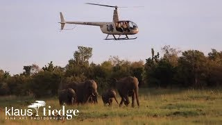 Flying over the Mara River with the Mara Elephant Project (MEP)
