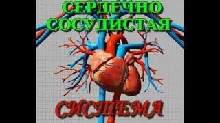 видео Кислородное обеспечение организма (пробы Штанге, Генчи и Серкина)