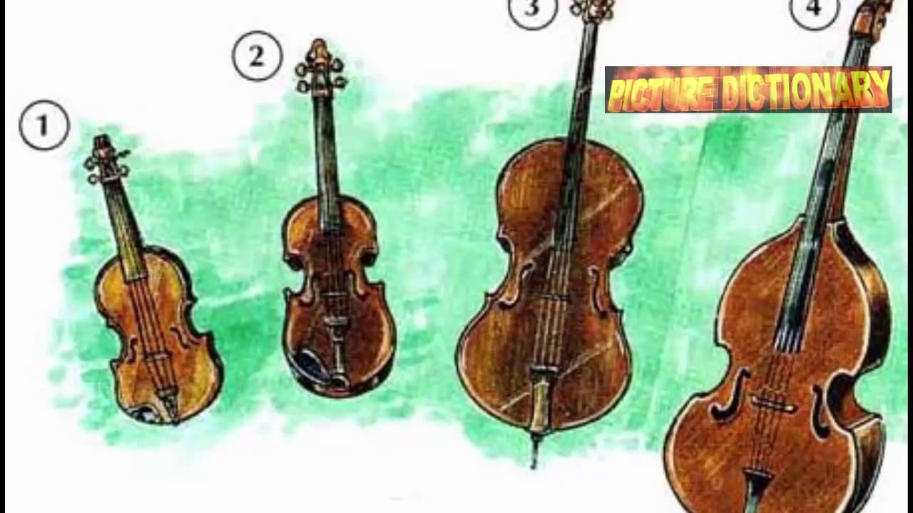 musical instruments - pictures of instruments - youtube