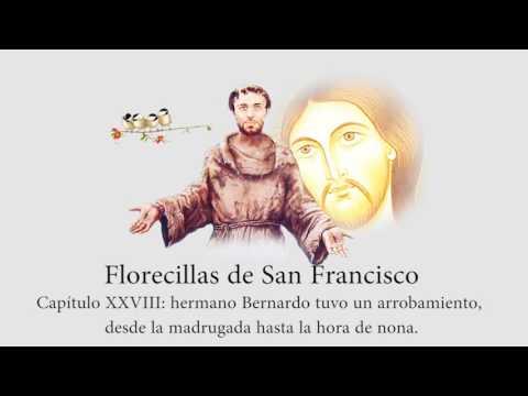 Florecillas de San Francisco de Asís. Cap. 28: Hermano Bernardo tuvo un arrobamiento