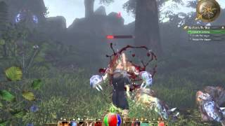 Legends of Aethereus Gameplay 1