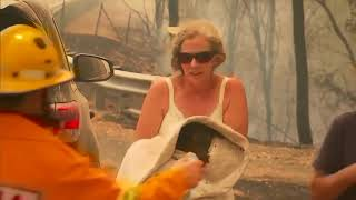 VIDEO: Woman saves koala from bushfires in Australia