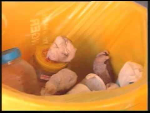 Solid waste management: biomedical waste management (ENV)