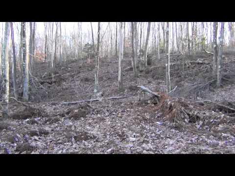 pennsylvania route 244 mashpedia free video encyclopedia