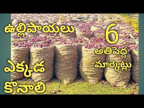 Indian Biggest Onion Markets Ullipaayalu Markets Onion Business High Profit Business