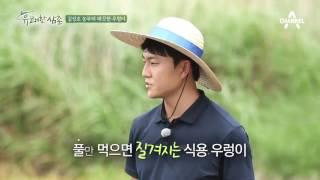 [농사비법] 김성호 농부의 건강한 우렁이 양식 노하우! #깨끗한물 #비타민