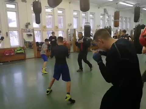 ТОРПЕДО Москва ШКОЛА БОКСА тренировка