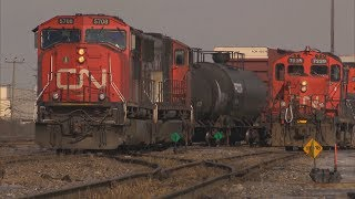 Thousands of CN Rail employees on strike