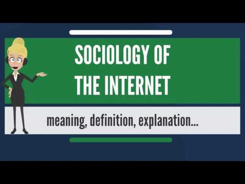 What is SOCIOLOGY OF THE INTERNET? What does SOCIOLOGY OF THE INTERNET mean?
