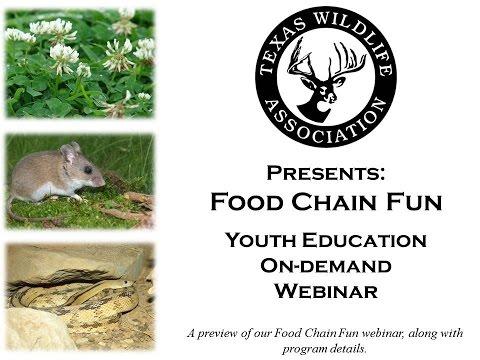 Food Chain Fun On-demand Youth Webinar