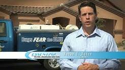 Tucson Termites Commercial | Essential Pest Control