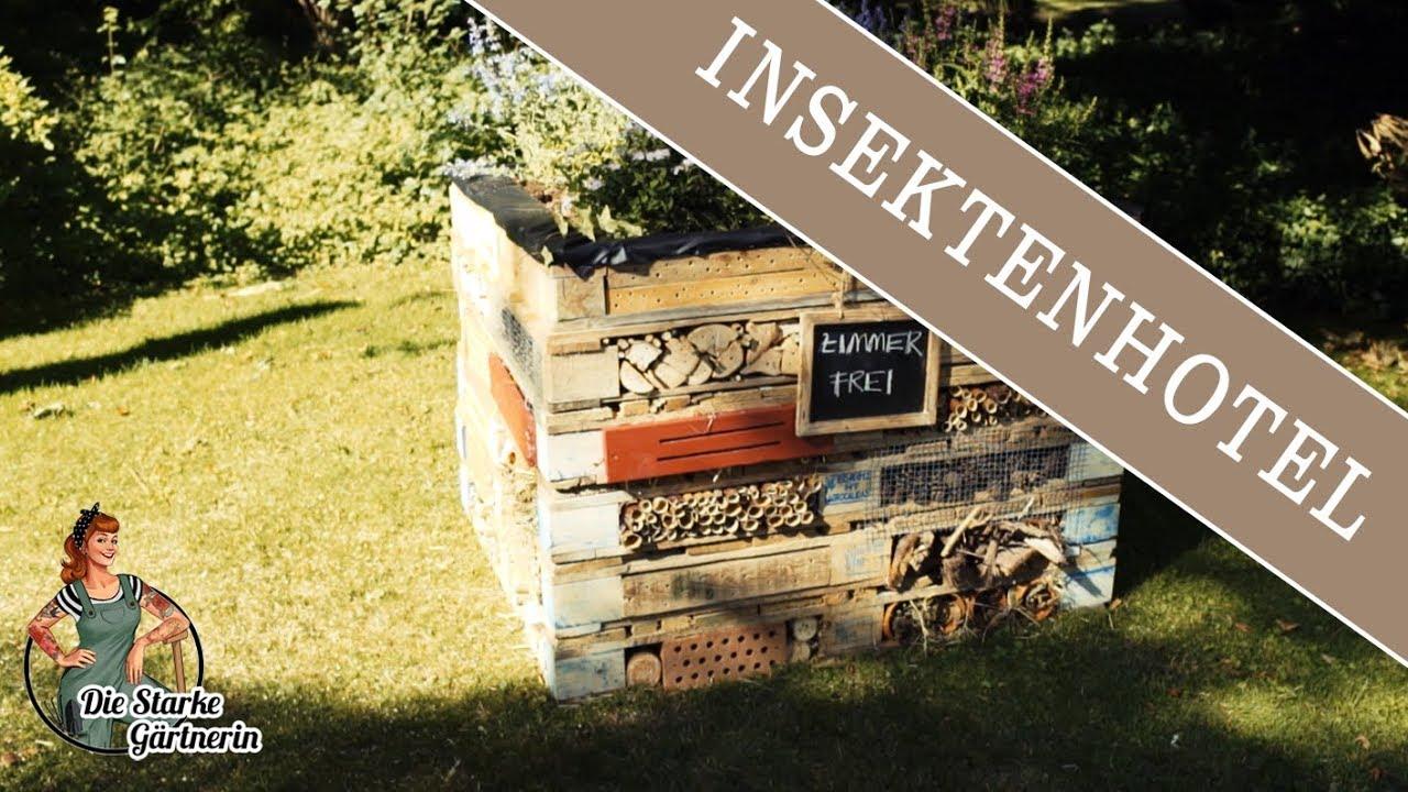 Xxl Insektenhotel Youtube