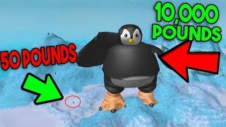 I'm THE LORD OF PENGUINS !!!!! Penguin Simulator / Roblox English / Roblox