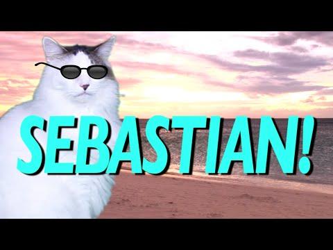 Happy Birthday Mary Cat Epic Youtube