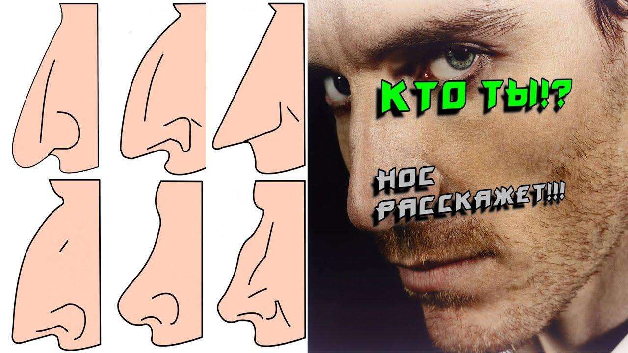 фото формы носа и описание