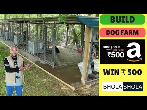 Pet Care – How to Make Amazing Dog Farm – Bhola Shola