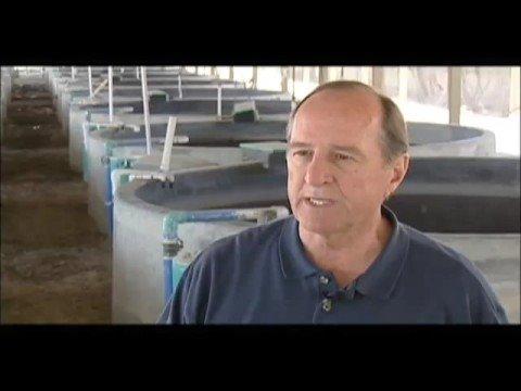 California aquaculture