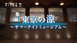 東京の涼 #3 ~サマーナイトミュージアム~ 江戸東京博物館・東京都美術館・東京都写真美術館(村山千代) [モーニングCROSS]