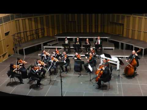 Cyprus Chamber Orchestra 1st concert V2
