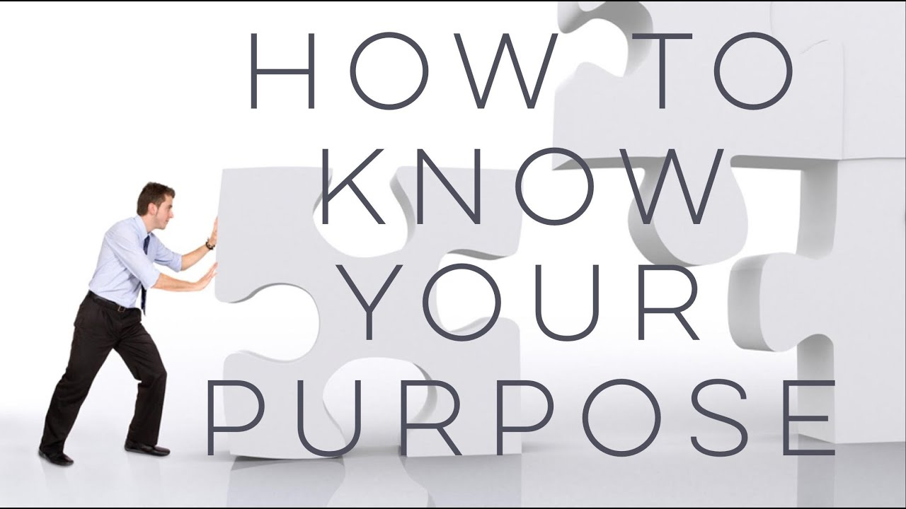 How to Know Your Purpose by Shane Wall