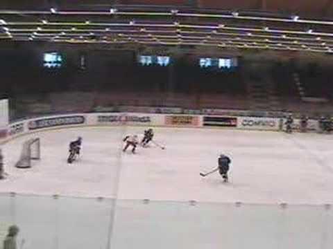Swedish Hockey Drills