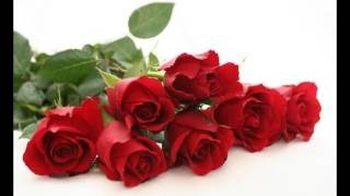 #99 Happy Rose Day Wallpaper [FREE Download HD Images, Pictures]