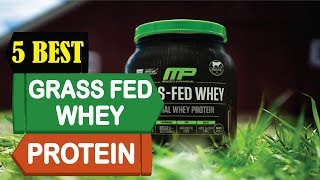 5 Best Grass Fed Whey Protein 2018 | Best Grass Fed Protein Review | Top 5 Grass Fed Whey Protein
