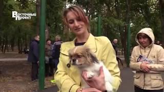 В Краматорске прошла  выставка собак всех пород