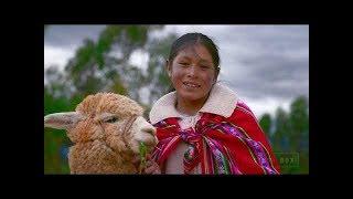 Peru 8K HDR 60FPS FUHD