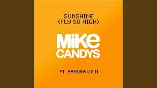 Sunshine (Fly So High) (2012 Original Mix)