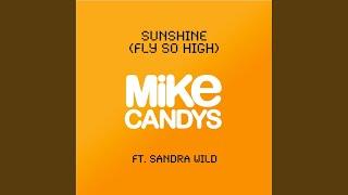 Sunshine (Fly So High) (2012 Original Mix)