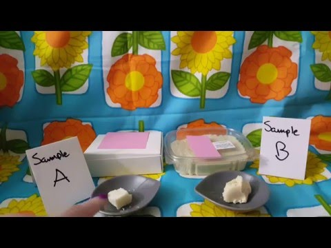 Etsy Sweet Treats Taste Test - Coconut Fudge