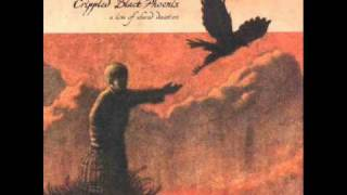 Crippled Black Phoenix - Really, How'd It Get This Way?