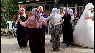 Çiftetelli ile Süper Köy Düğünü / Müzisyen Özlem Ökten