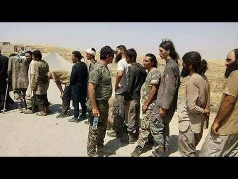 isis surrender to peshmerga 2017 مئات الدواعش الاصليين سلمو انفسهم للبيشمركة