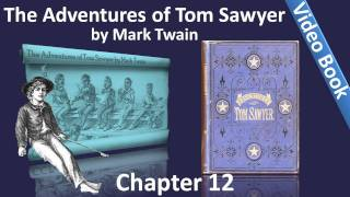 Chapter 12 - The Adventures of Tom Sawyer by Mark Twain - The Cat And The Pain-killer