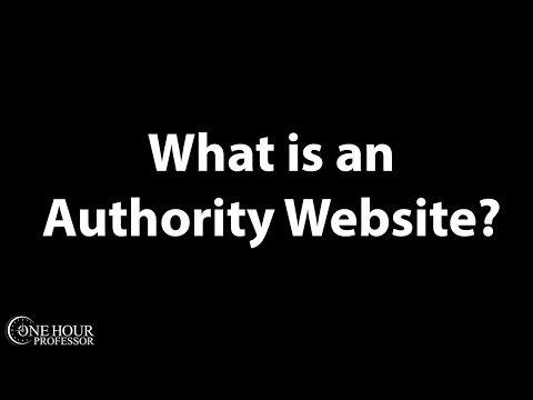 What is an authority website?