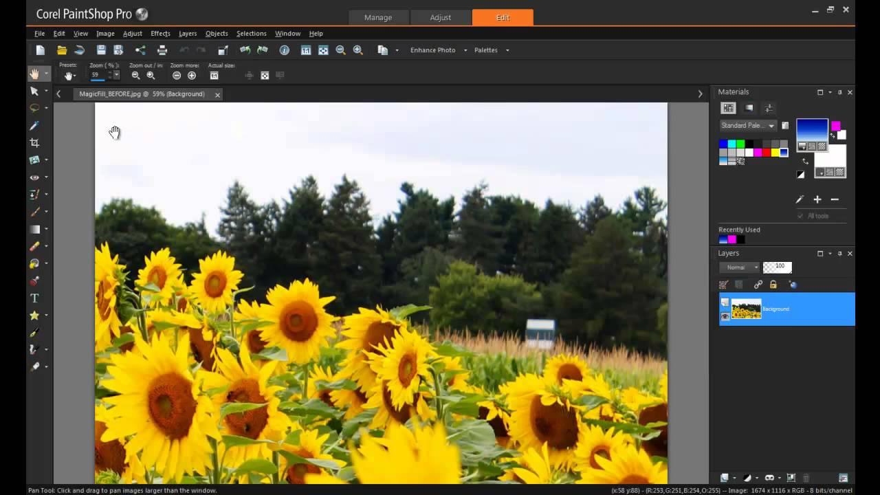Buy cheap PaintShop Pro X7 Ultimate Pack