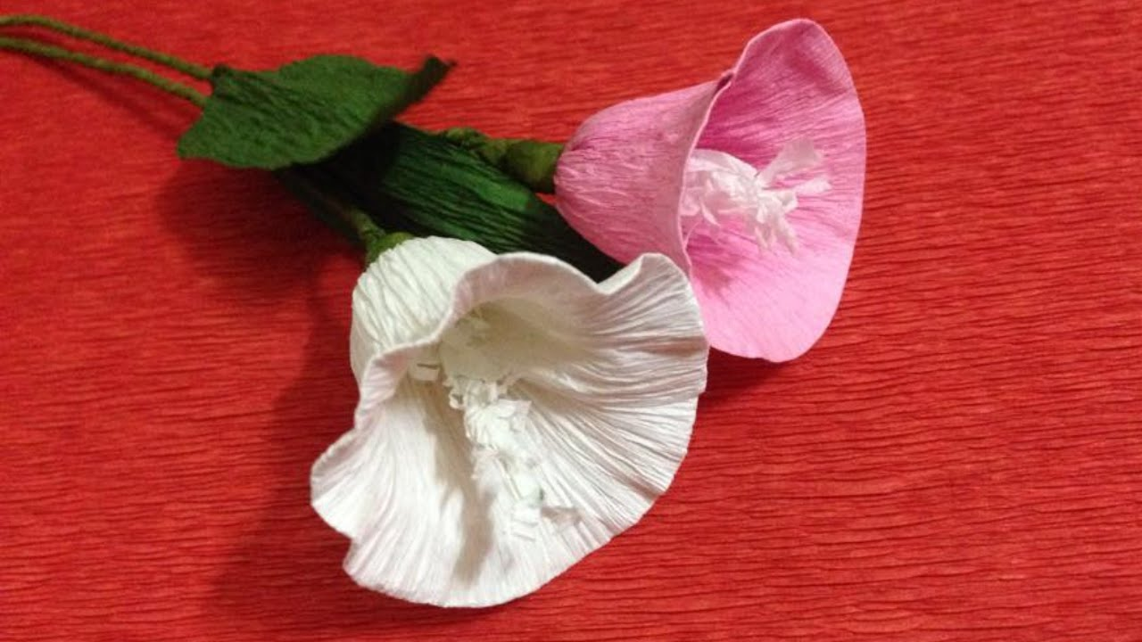 How to make morning glory crepe paper flowers crepe paper craft its youtube uninterrupted mightylinksfo Images