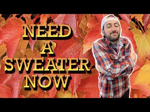 Need A Sweater Now (Post Malone Parody) - Young Jeffrey's Song of the Week