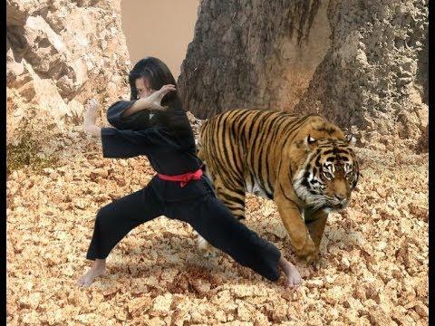 Pencak Silat Harimau Utara Part 2 Youtube