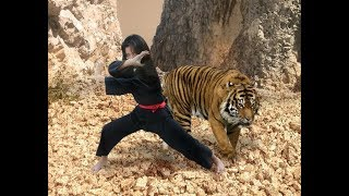 Download Pencak Silat Harimau Utara Part 2 Mp3