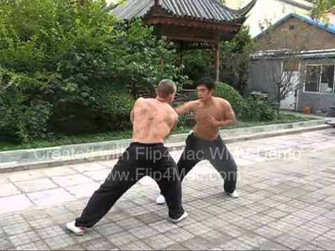 Master Xu YiZhen TaiChiChuan Sparring