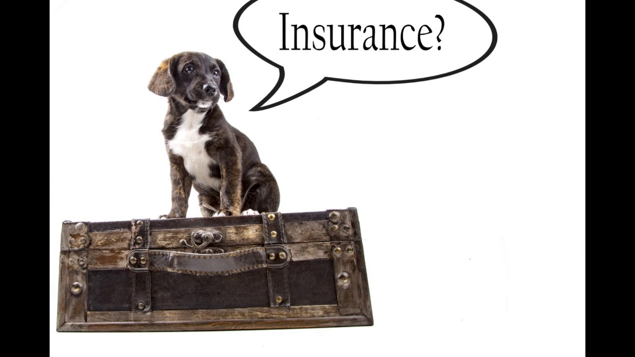 Countrywide Insurance Quote Countrywide Insurance Store  Youtube