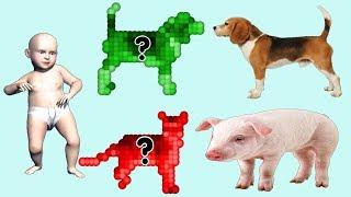 домашние животные для детей умный ребенок - Видео для детей про животных