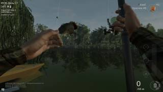 Fishing Planet - Обзор игры. Симулятор рыбалки онлайн.(, 2016-12-02T14:25:44.000Z)