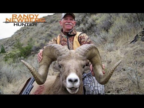 Hunting Montana Bighorn Sheep With Randy Newberg And Friends - Missouri River Breaks (OYOA S2 E2)